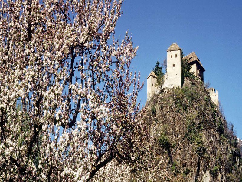 Alte Burg in Suedtirol