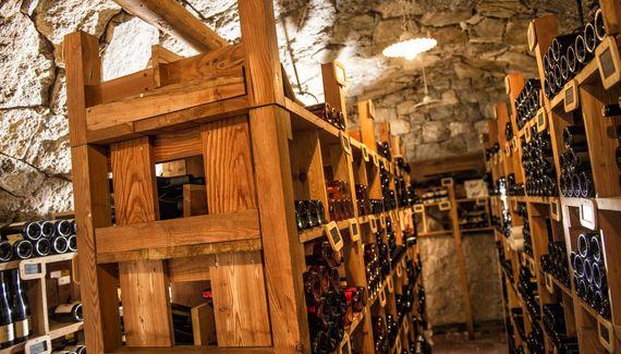 Weinbau & Vinothek