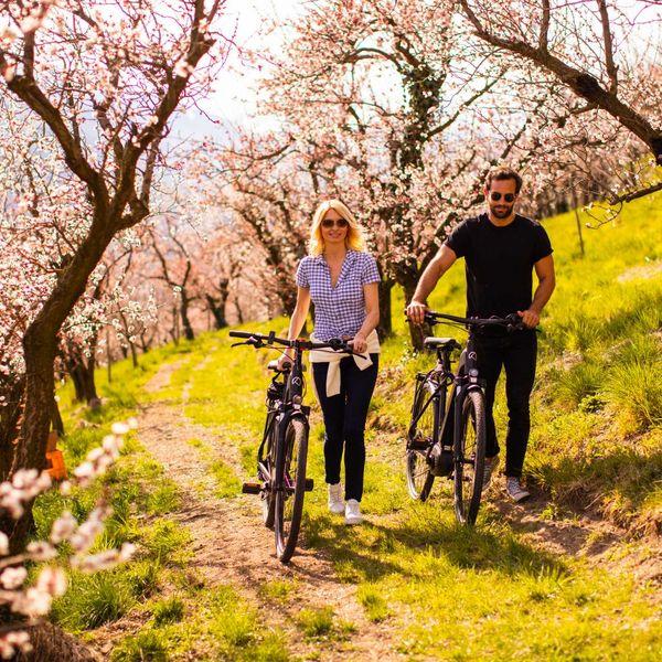 Genussraadtour_fürhling_apfelblüte_bike_hotel_kostenloser_bikeverleih_aktivurlaub_südtirol