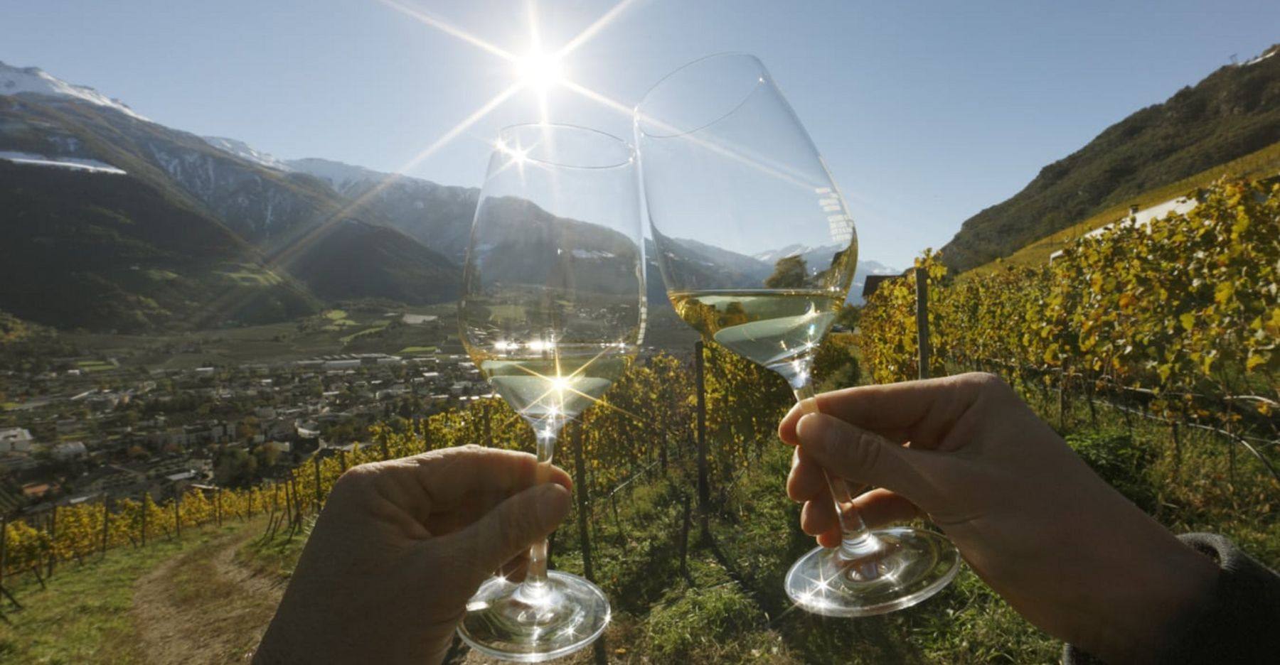 Gourmetherbst & Riesling